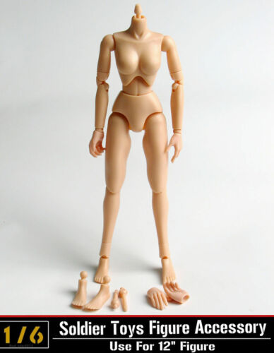 "CG CY 1//6th Female Girl Small Breast Plastic Body Model  F 12/"" Figure Toys"