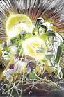 Incredible Hulks : Fall of the Hulks (2012, Hardcover)
