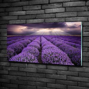 Wandbild-aus-Plexiglas-Druck-auf-Acryl-100x50-Landschaften-Lavendelfeld