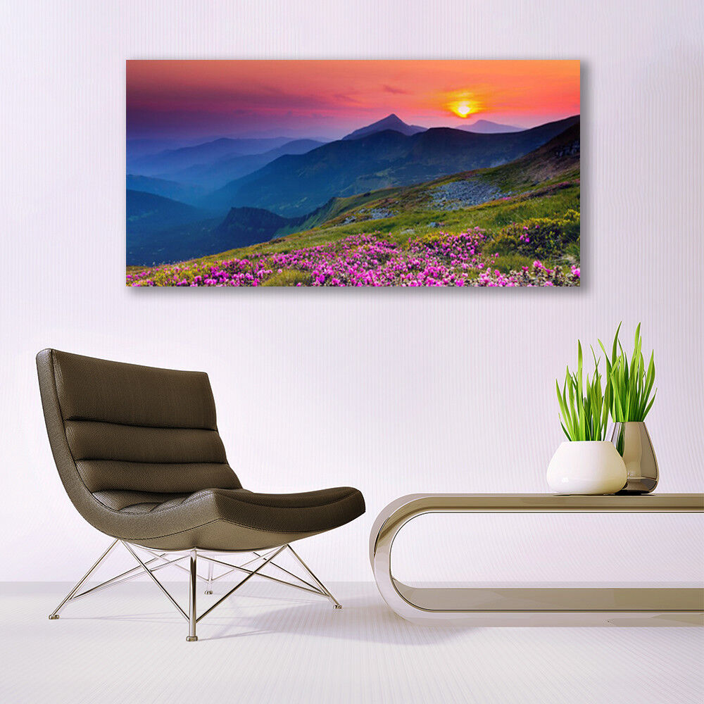 Canvas Canvas Canvas print Wall art on 140x70 Image Picture Mountains Meadow Flowers Landscape 758f02