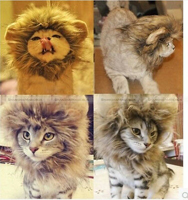 Fancy Pet Costume Cute Lion Mane Cat Hat Wig Cosplay Lion Stuffed Plush SM8 #023