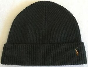 cbffac3eb Details about Polo Ralph Lauren Merino Wool Watch Cap~Armadillo~Multi Color  Logo~One Size~NWT