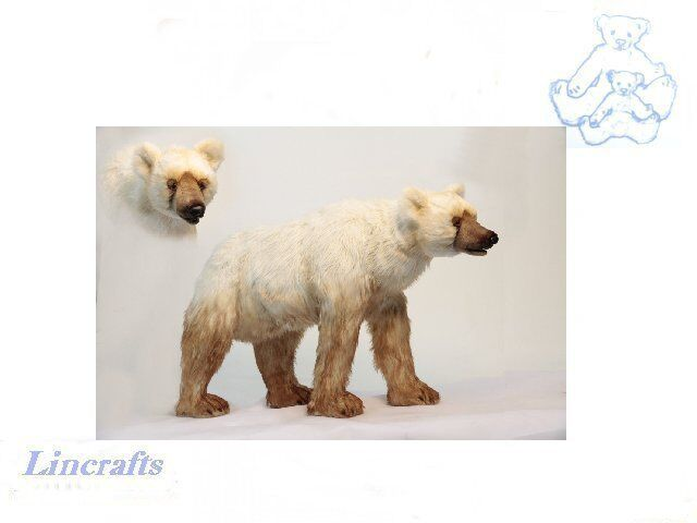 Hansa Pershian Bear 6127 Plush Soft Toy Sold by Lincrafts Established 1993
