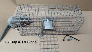 Fenn Mark4 trap Mk4 genuine  +/-  tunnels