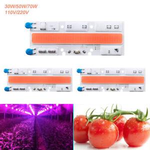 1 X Full Spectrum Del Pousse Lumière Del Cob Chip Pour Hydroponique Serre Plante-afficher Le Titre D'origine
