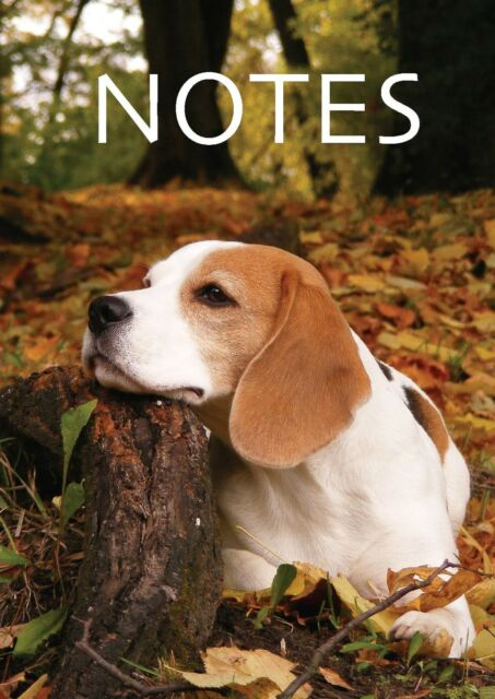 A5 Notebook Wirobind Ideal for Revision Notes Plans & Ideas  Dog & Puppy Designs