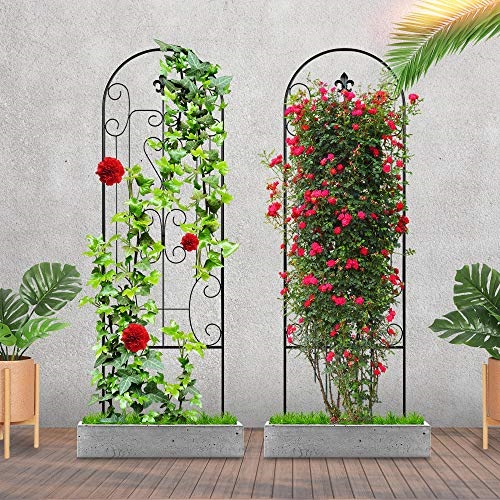 18 Tomato Cage Plant Support for Climbing Vine Flowers Mimeela 2 Pack Garden Trellis for Climbing Plants Upgrade Obelisk Garden Tower No Assembly Required