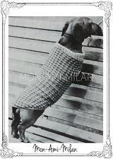 Vintage Knitting Pattern Copy DACHSHUND DOG COAT PET CLOTHES CANINE FASHION DK