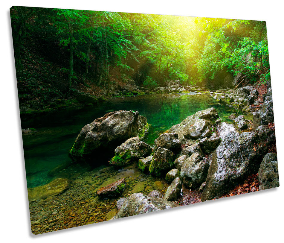 Mountain River Forest Landscape SINGLE CANVAS WALL ART Picture Print