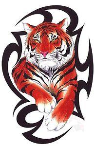 Tatuaje Tigre Tribal tribal tigre tatuaje diseño camiseta - mujer hombre infantil s m l