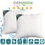 Cuscino-Letto-Ortopedico-Cervicale-Adatto-per-dormire-in-tutte-le-posizioni miniatura 3
