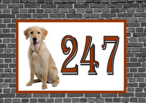 Maison Porte Numéro SIGNE Border Golden Labrador design porte métallique signe