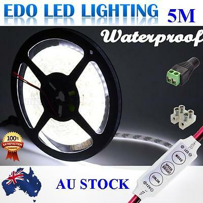12V Cool White 5M 2835 SMD 300 LED Strips Led Strip Lights Waterproof + Dimmer
