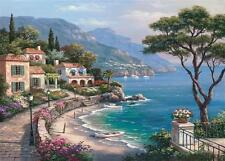 ANATOLIAN JIGSAW PUZZLE ESCAPE SUNG KIM 2000 PCS COASTAL LANDSCAPES #3911