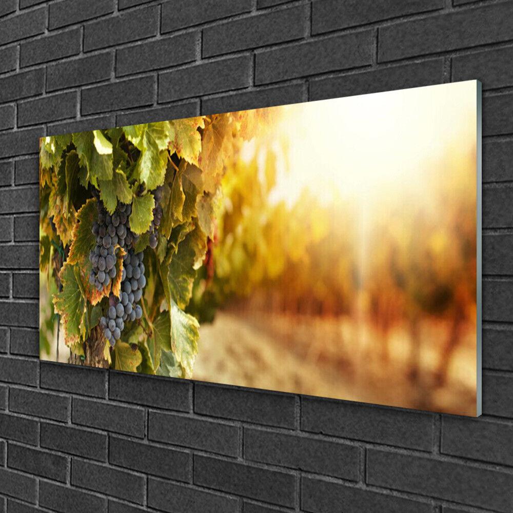 Image sur verre acrylique Tableau Impression 100x50 Nature Raisin