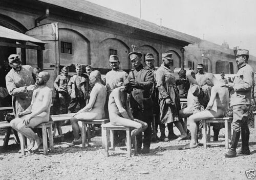German soldiers having heads shaved and being deloused World War I 8x10 Photo