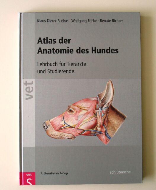 Atlas der Anatomie des Hundes von Klaus-Dieter Budras, Renate ...