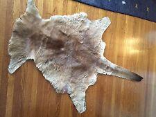 """Kangaroo Hide: 72""""x48"""" LARGE Australia Hair Fur Pelt Rug Wall-Hanging Backing"""