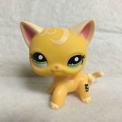 Littlest Pet Shop LPS Figura Toys #2194 Arancione Giallo Capelli Corti CAT S30