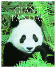 Giant Pandas by Heather Angel (Paperback, 2005)