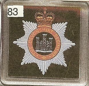 Acrylic Military Key Ring Devonshire Regiment