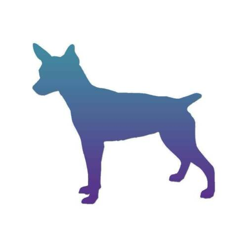 Multiple Patterns /& Sizes Vinyl Decal Sticker Rat Terrier Dog ebn1999