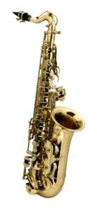 Roy-Benson-AS-201-Student-Alt-Saxophon-Kindersaxophon-lackiert