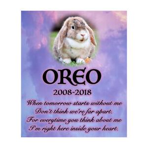 Franc Personalised Pet Memorial Plaque Lapin Deuil Poème Sympathie Photo Signe-afficher Le Titre D'origine Couleurs Harmonieuses
