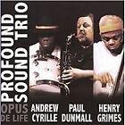 Profound Sound Trio - Opus de Life (Live Recording, 2010)