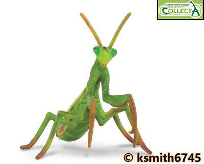 CollectA Libélula De Juguete de plástico sólido Wild Zoo Animal Insecto Bug Nuevo *