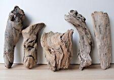 Schwemmholz  Treibholz  Driftwood  5 knorrige Hölzer Dekoration  Basteln 199