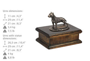 Amstaff cropped, dog exclusive urn made of cold cast bronze, ArtDog, CA - Zary, Polska - Amstaff cropped, dog exclusive urn made of cold cast bronze, ArtDog, CA - Zary, Polska