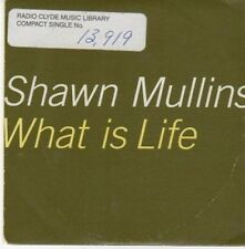 (BE774) Shawn Mullins, What Is Life - 1999 DJ CD