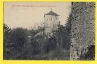 cpa Rare FRANCE Old Postcard 77 - PROVINS Le PINACLE vu de la TOUR du LUXEMBOURG