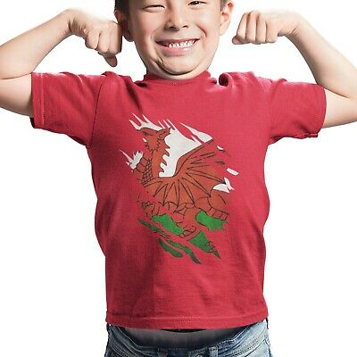 Wales Kid/'s T-Shirt Country Flag Map Top Children Boys Girls Unisex Welsh