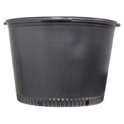 "9/"" Wide x 8.5/"" Height Lot of 100  Heavy Duty Premium Nursery Pot 2 Gallon"