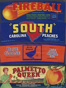 "(4) LOT GREAT VINTAGE ORIGINAL 1940'S ""SOUTH CAROLINA"" PEACHES CRATE LABEL ART"