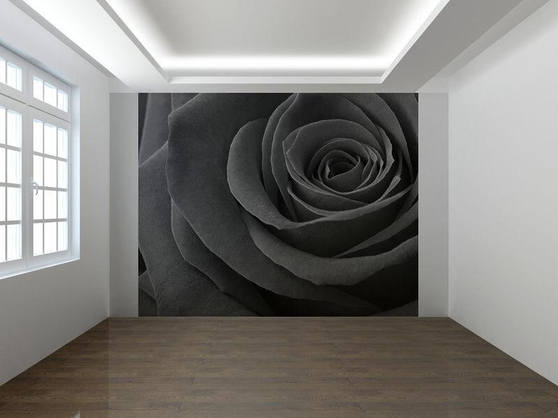 Rose Close-Up Schwarz und Weiß Foto Wandtapete Wandgemälde (8625306)