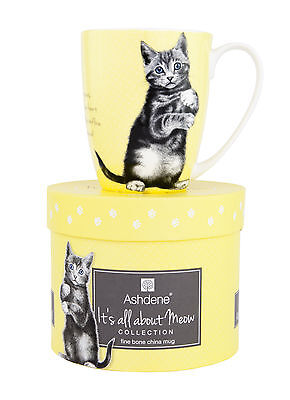 Kitten Paws It's All About Meow Yellow Fine Bone China Tea Coffee Mug Cup New
