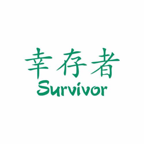 Multiple Colors /& Sizes Survivor Chinese Symbols ebn2694 Decal Sticker