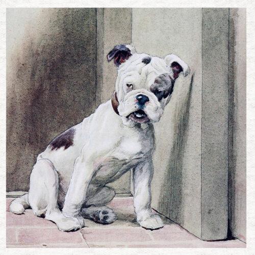 """Bulldog Coser la impresión en un panel de tela moderna /""""escucha/"""" Cecil Aldin 1890"""