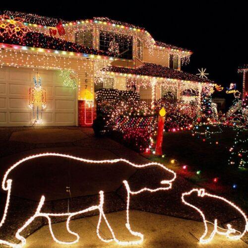 LED Christmas Light Wedding Party Holiday Xmas Decor Fairy String Lights TREE