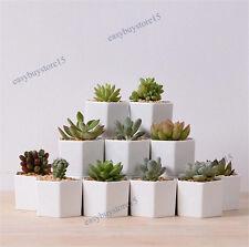 office flower pots. 1x Hexagon White Ceramic Succulent Planter Miniature Flower Pots Office Decor A
