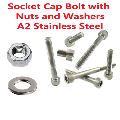 Set Socket Cap Bolt 912 With Nuts and Washers Stainless Steel M4 M5 M6 M8