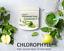 Chlorophyll Powder Unicity Drink Detox Whitening Bright ...