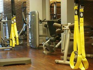 TBT-Body-Training-Body-Trainer-Suspension-Straps-Oryginal-MxG-trainer-dby