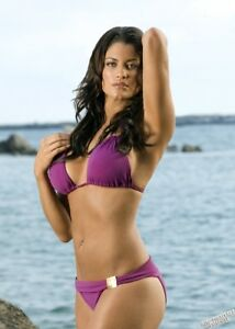 Wwe diva kaitlyn hot bikini consider