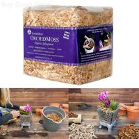 Supermoss 22325 Orchid Sphagnum Moss Dried, Natural, 1lb Mini Bale