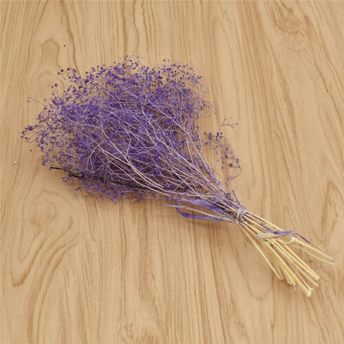 Natural Gypsophila Dried Flower Bouquet Flower For Party Home Decoration