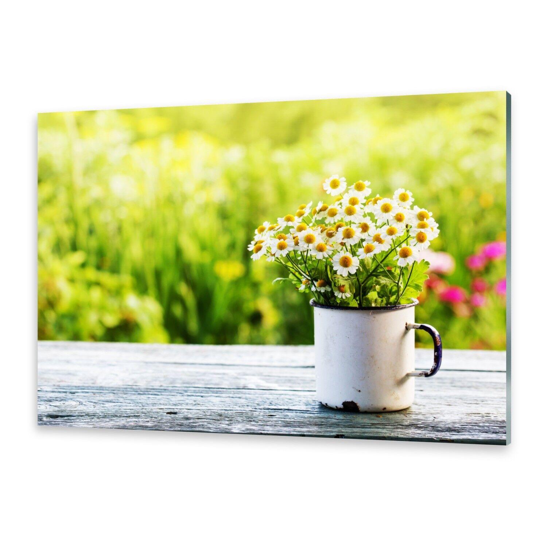 Acrylglasbilder Wandbild aus Plexiglas® Bild Gänseblümchen